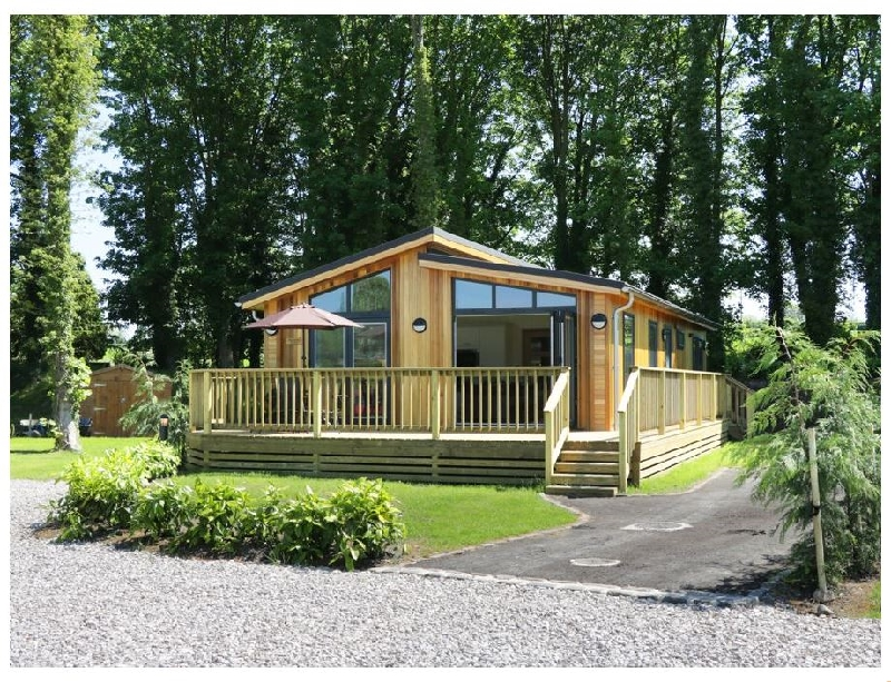 Click here for more about Squirrel Lodge
