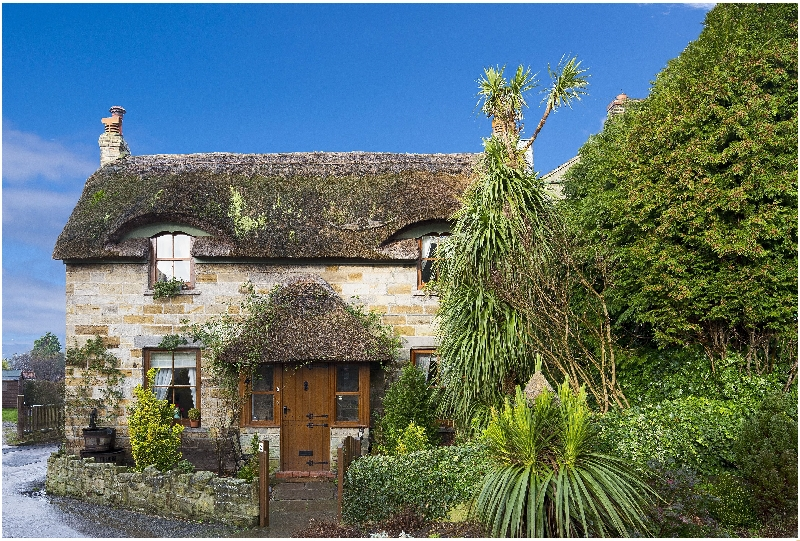 Click here for more about Sunnybank Thatch