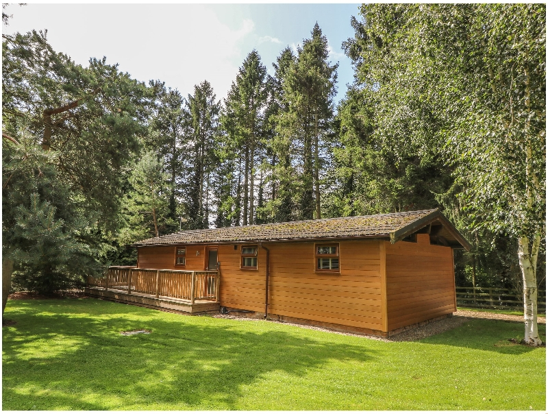 Click here for more about Pine Lodge